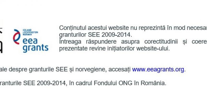 Fondul-ONG